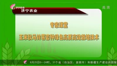 专家课堂:玉米秋马铃薯套种绿色高质高效栽培技术