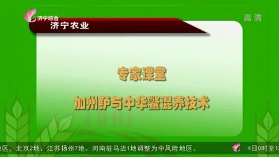 專家課堂:加州鱸與中華鱉混養技術