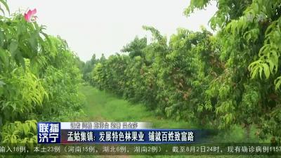 孟姑集镇:发展特色林果业 铺就百姓致富路