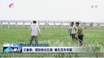 魚臺王魯鎮:稻田繪出巨畫 獻禮百年華誕