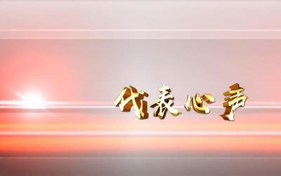 代表心声 | 臧永芝:乡村振兴路  巾帼展风采