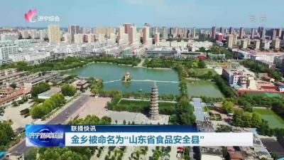 """金乡被命名为""""山东省食品安全县"""""""