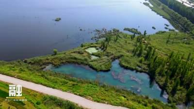 鄒城太平國家濕地公園:濕地秋意濃 共賞好風景