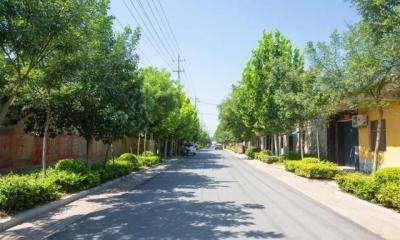 ?嘉祥县探索生态价值实现路径 走出山区绿色发展之路