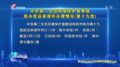 中央第二生态环境保护督察组转办信访举报件办理情况 (第十九批)
