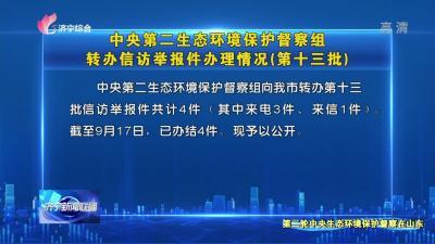 中央第二生态环境保护督察组转办信访举报件办理情况(第十三批)