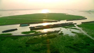 """水產品質量安全追溯 打響""""微山湖""""漁業品牌"""