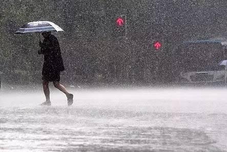 暴雨+大风!山东局地有大到暴雨,阵风可达8至9级