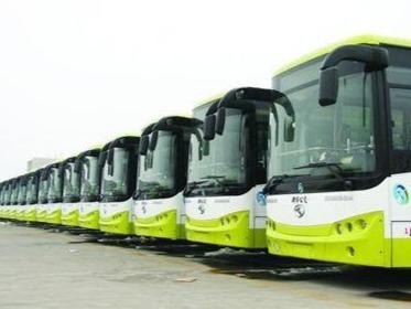 好消息!济宁公交免费乘车活动来了