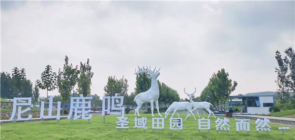 """""""尼山鹿鸣""""示范区:圣人门前小地瓜 共同富裕大产业"""