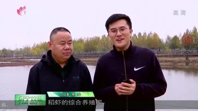 专家课堂:稻田小龙虾生态新濠天地app下载养殖技术要点