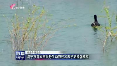 濟寧市首家市級野生動物收容救護站掛牌成立