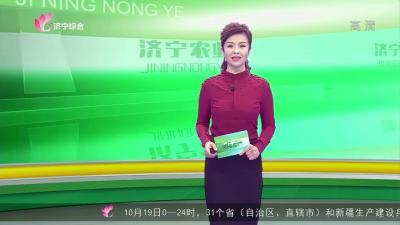 新濠天地官网农业-20211020