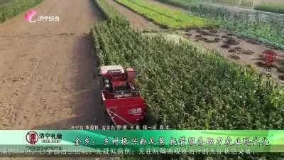 金乡:乡村振兴新风景 托管服务助力农业现代化