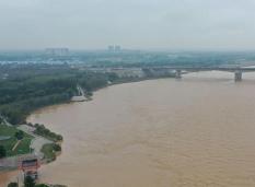 这就是山东·战秋汛 | 新濠天地官网市凝心聚力,确保黄河安澜