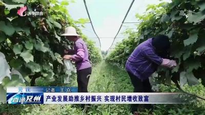 兖州产业发展助推乡村振兴 实现村民增收致富