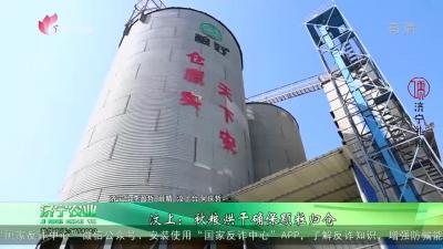 汶上:秋粮烘干确保颗粒归仓