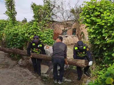 助力乡村振兴丨农村人居环境整治 金乡城管在行动