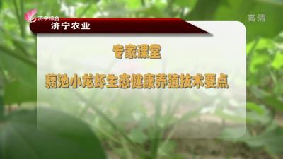 专家课堂:藕池小龙虾生态新濠天地app下载养殖技术要点